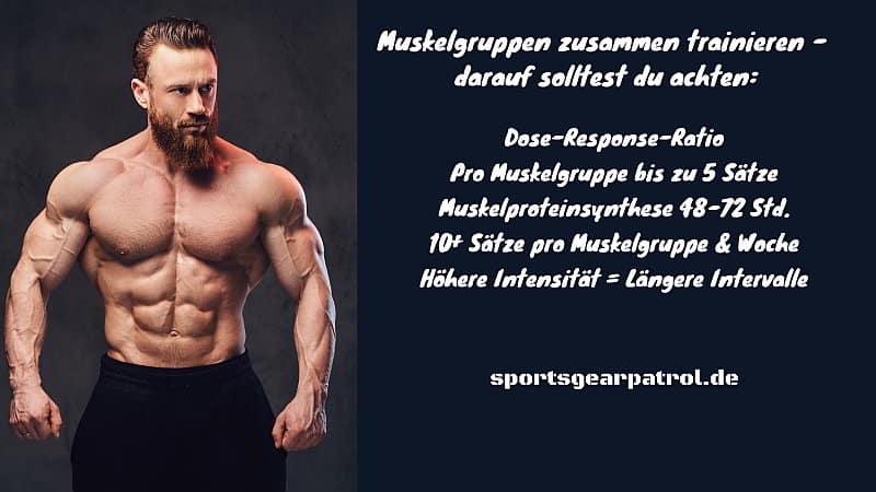 Welche Muskelgruppen zusammen trainieren